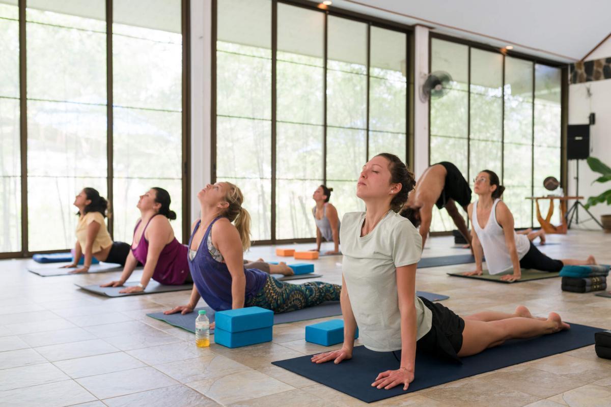 Wonderland Koh Phangan Detox And Yoga Thailand 12