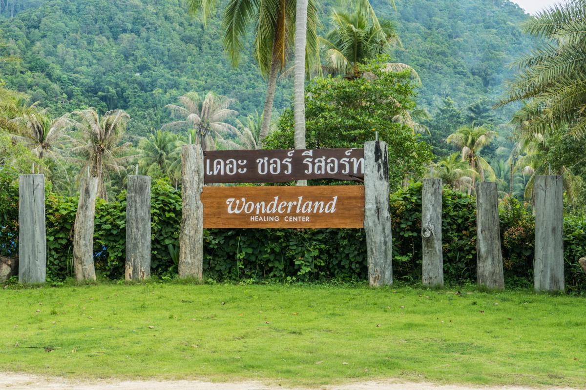 Wonderland Koh Phangan Detox And Yoga Thailand 38